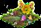 Bacca di crespino.png