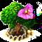 bougainvillea_upgrade_1.png