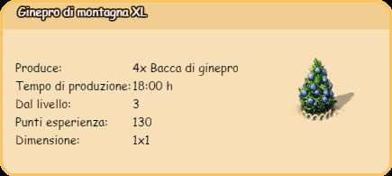ginepro1.png
