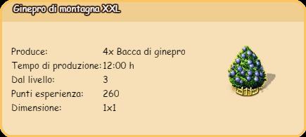 ginepro2.png