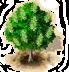 icona salicone.png