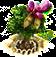 judastree_upgrade_1.png