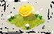 miniatura zucca.png