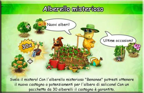 news alberello benanee.png