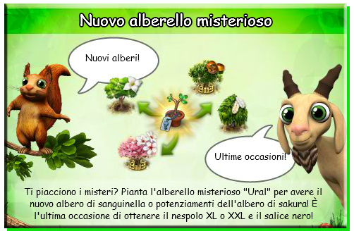 news alberello1.png