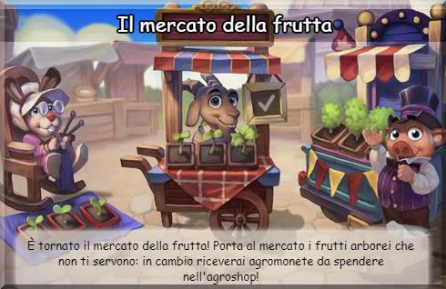 news mercato frutta.png
