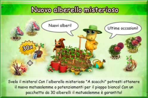 news vasetto.png