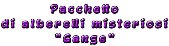pacchetto gange.png