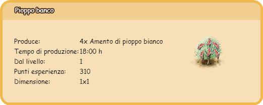 pioppo bianco.png