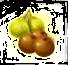 pomelo frutto.png