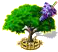 wisteria_upgrade_2.png