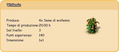 wollemia.PNG
