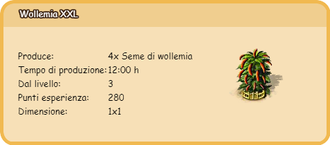 wollemia xxl.png